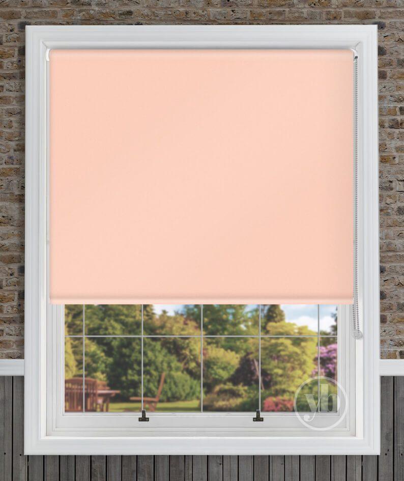 1.Palette-Dusky-Pink-window