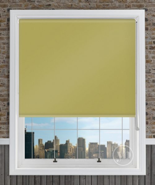 1.Palette-Lime-Green-window