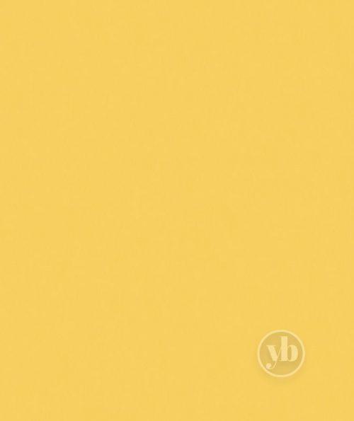 2.Banlight-Duo-FR-Sunshine-small-pattern
