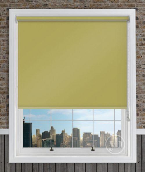2.Palette-Lime-Green-Cass