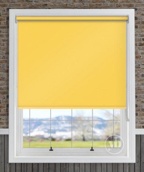 2.Palette-Sunshine-Cass