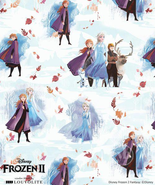 3.Disney-Frozen-II-Fantasy-small-pattern
