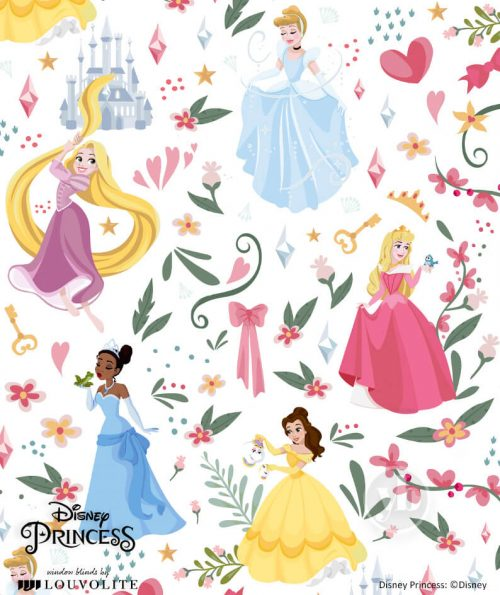 3.Disney-Princess-small-pattern