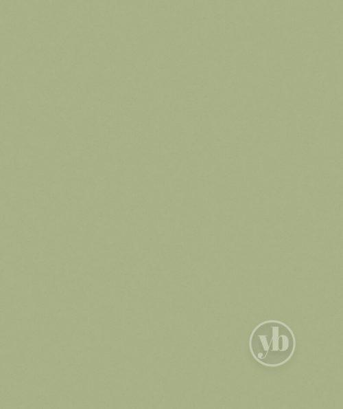 4.Polaris-Green-pattern